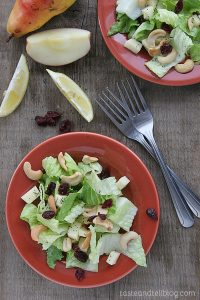 Winter Fruit Salad with Lemon Poppyseed Dressing on Taste and Tell