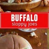Buffalo Sloppy Joes collage