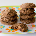 Chocolate-Chocolate Chip Mint Cookies | www.tasteandtellblog.com