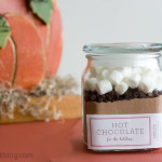 Homemade Hot Cocoa Mix | www.tasteandtellblog.com