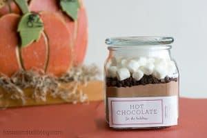 Homemade Hot Cocoa Mix | www.tasteandtellblog.com