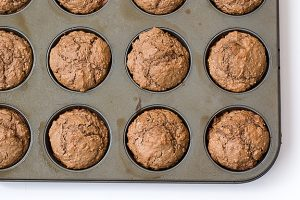 Cocoa Oatmeal Muffins | www.tasteandtellblog.com