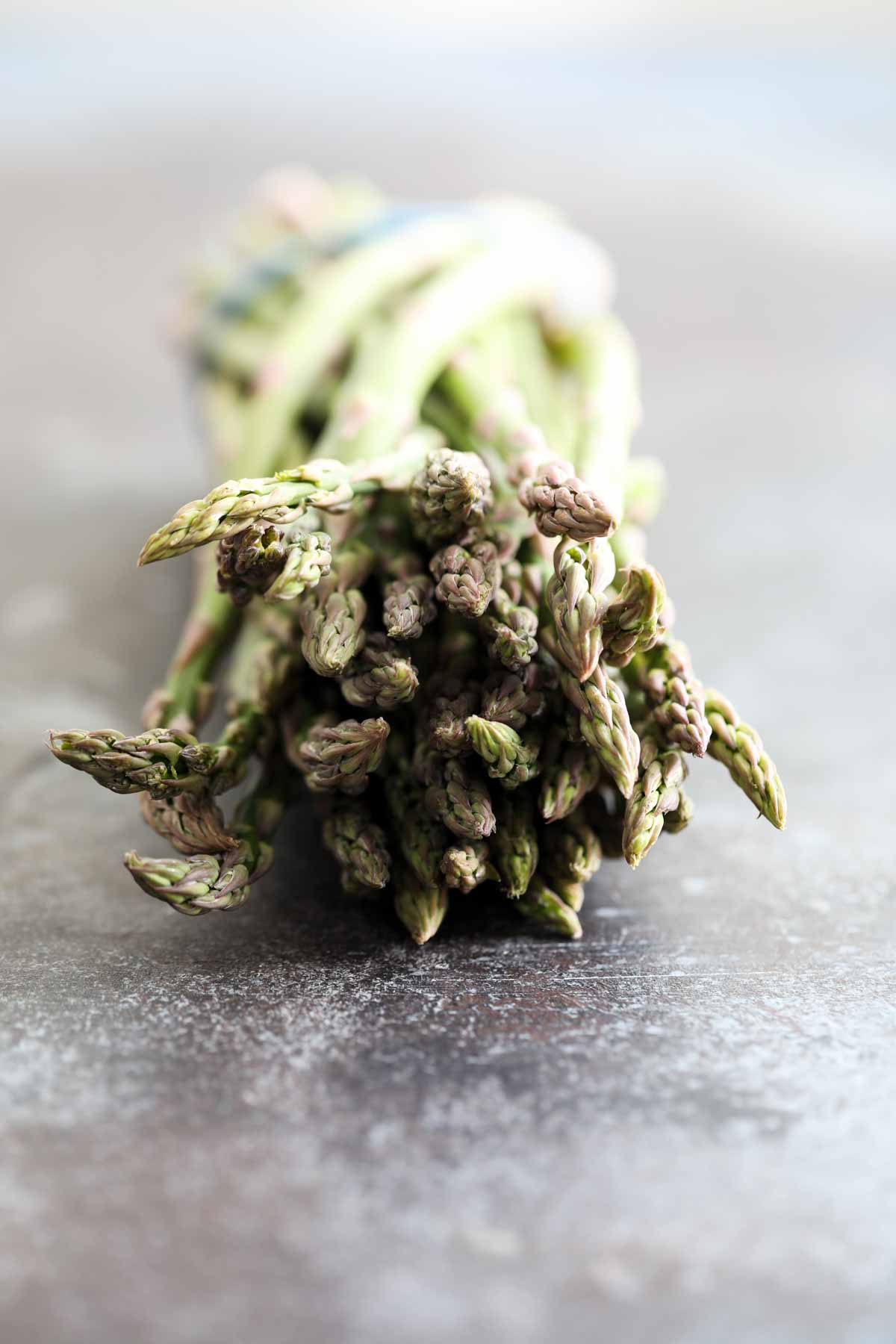 close up of asparagus tips