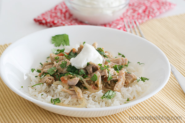 Slow Cooker Salsa Pork