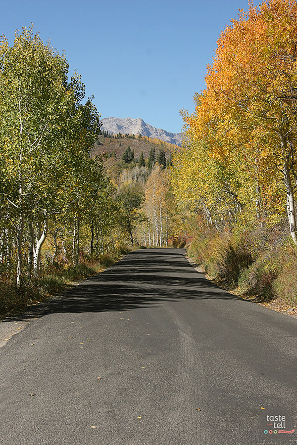 Nothing beats a drive through the Alpine Loop in the fall! Take a virtual tour through the canyon with a stop at Sundance Resort.