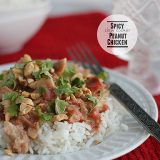 Spicy Slow Cooker Peanut Chicken