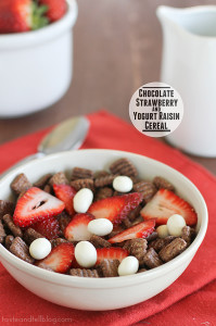 Chocolate Strawberry Yogurt Raisin Cereal | www.tasteandtellblog.com