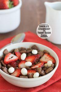 Chocolate Strawberry Yogurt Raisin Cereal | www.tasteandtellblog.com