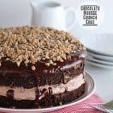 Chocolate Mousse Crunch Cake | www.tasteandtellblog.com