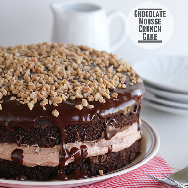 Chocolate Mousse Crunch Cake | www.tasteandtellblog.com
