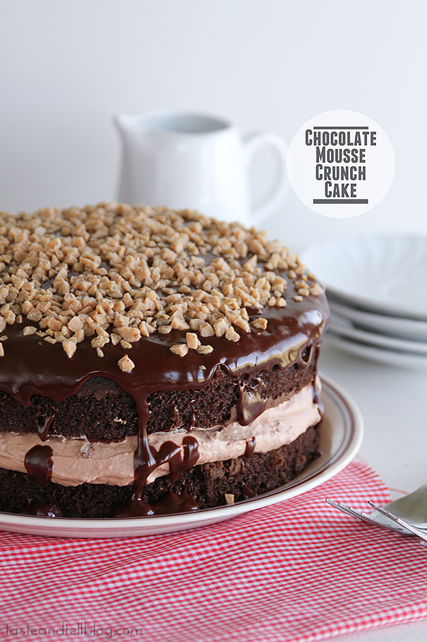 Chocolate Mousse Crunch Cake Taste And Tell