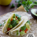 Creamy Cilantro Chile Chicken Tacos