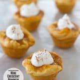 Mini Crescent Pumpkin Pies | Taste and Tell