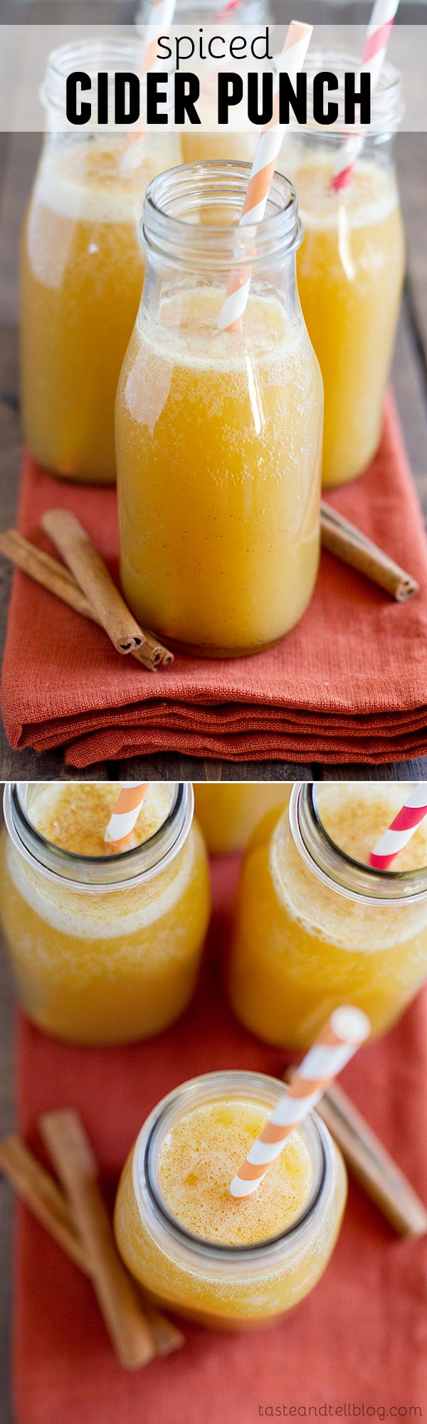 Cider is not always meant to be served warm! This Spiced Cider Punch is filled with lots of citrus flavor and warm spices and served chilled.