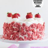 Strawberry Milkshake Ice Cream Cake on Taste and Tell