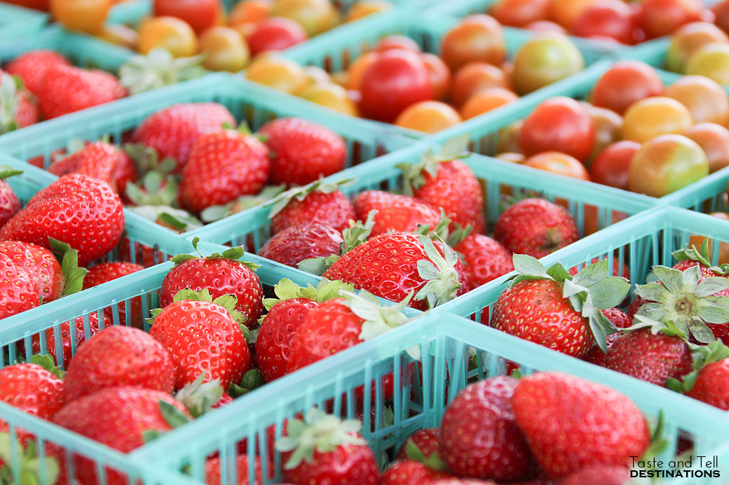 Fresh Produce at an Austin Farmer's Market
