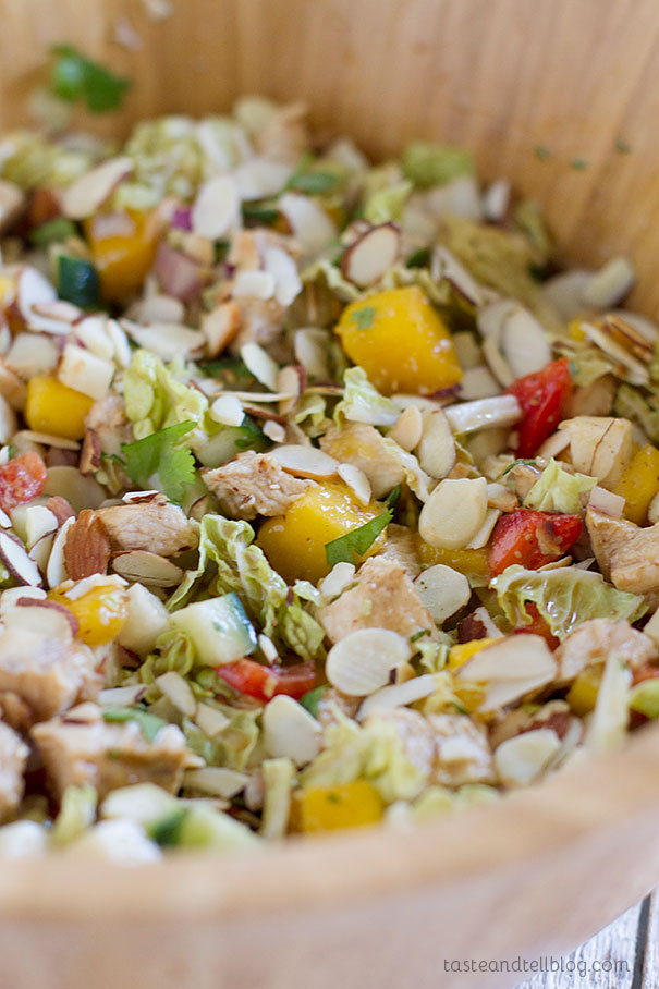 Mango Chicken Salad - Chopped chicken, sweet mango and lots of vegetables are combined with a coconut milk dressing in this light and healthy Mango Chicken Salad.