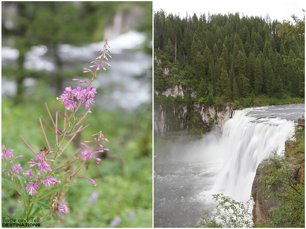 For beautiful views, drive the Mesa Falls Scenic Byway