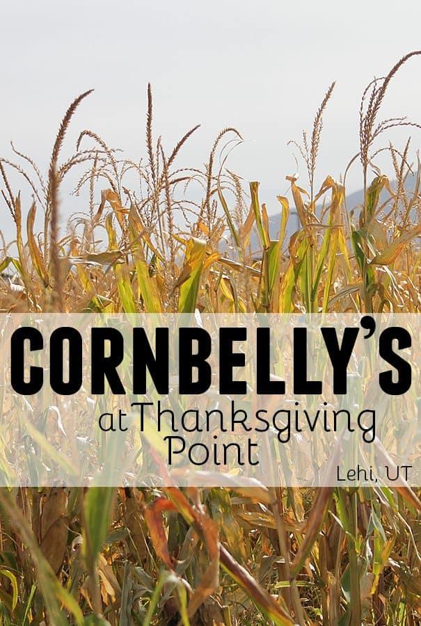 Cornbelly's at Thanksgiving Point – Lehi, UT