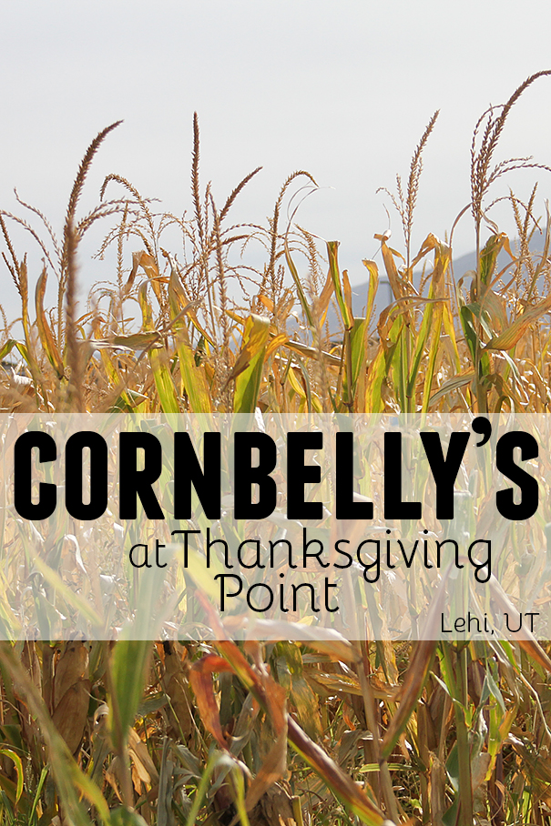 Cornbelly's at Thanksgiving Point - Lehi, UT