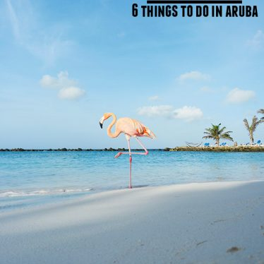 Taste and Tell's Guide - top 6 things to do in Aruba