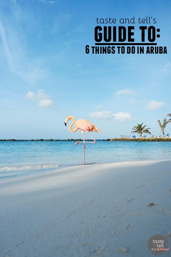 Taste and Tell's Guide – 6 Things To Do in Aruba