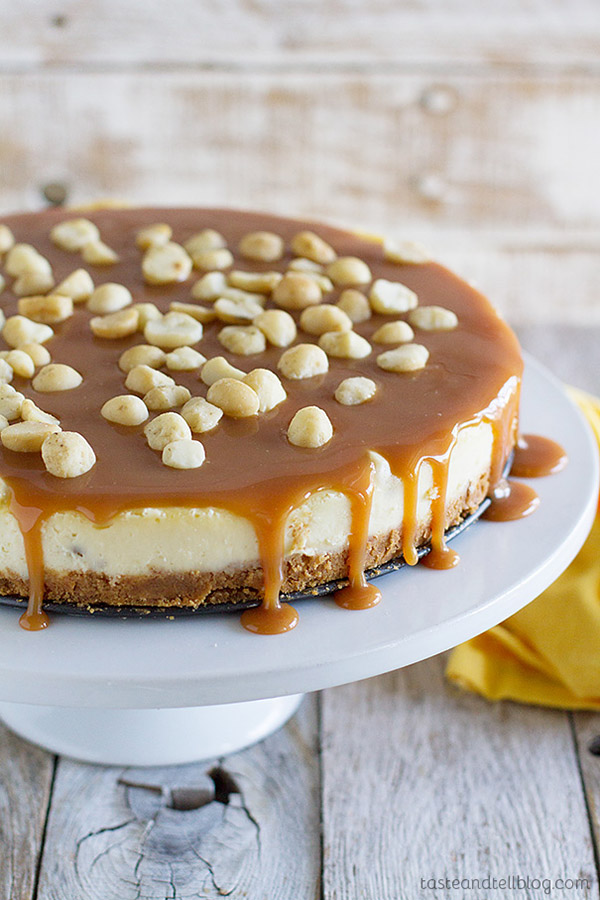 This White Chocolate Cheesecake with Macadamia Nuts and Caramel is a creamy white chocolate cheesecake with macadamia nuts throughout, and a homemade caramel sauce poured over the top.