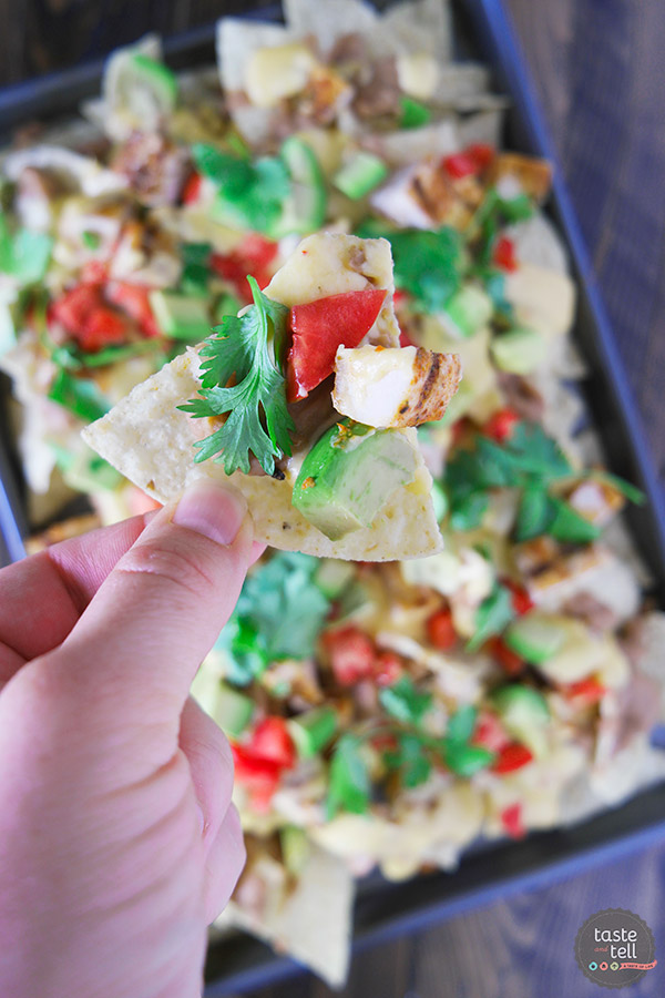 Whether for family dinner or game night, everyone will love these Grilled Chicken Nachos. Tortilla chips are topped with beans, taco seasoned grilled chicken, and an easy homemade cheese sauce in this easy, cheesy Tex-Mex recipe.