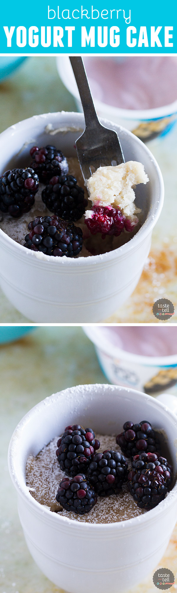 Craving something sweet but don't want to make a whole cake? This Blackberry Yogurt Mug Cake is your 7 minute answer to dessert!