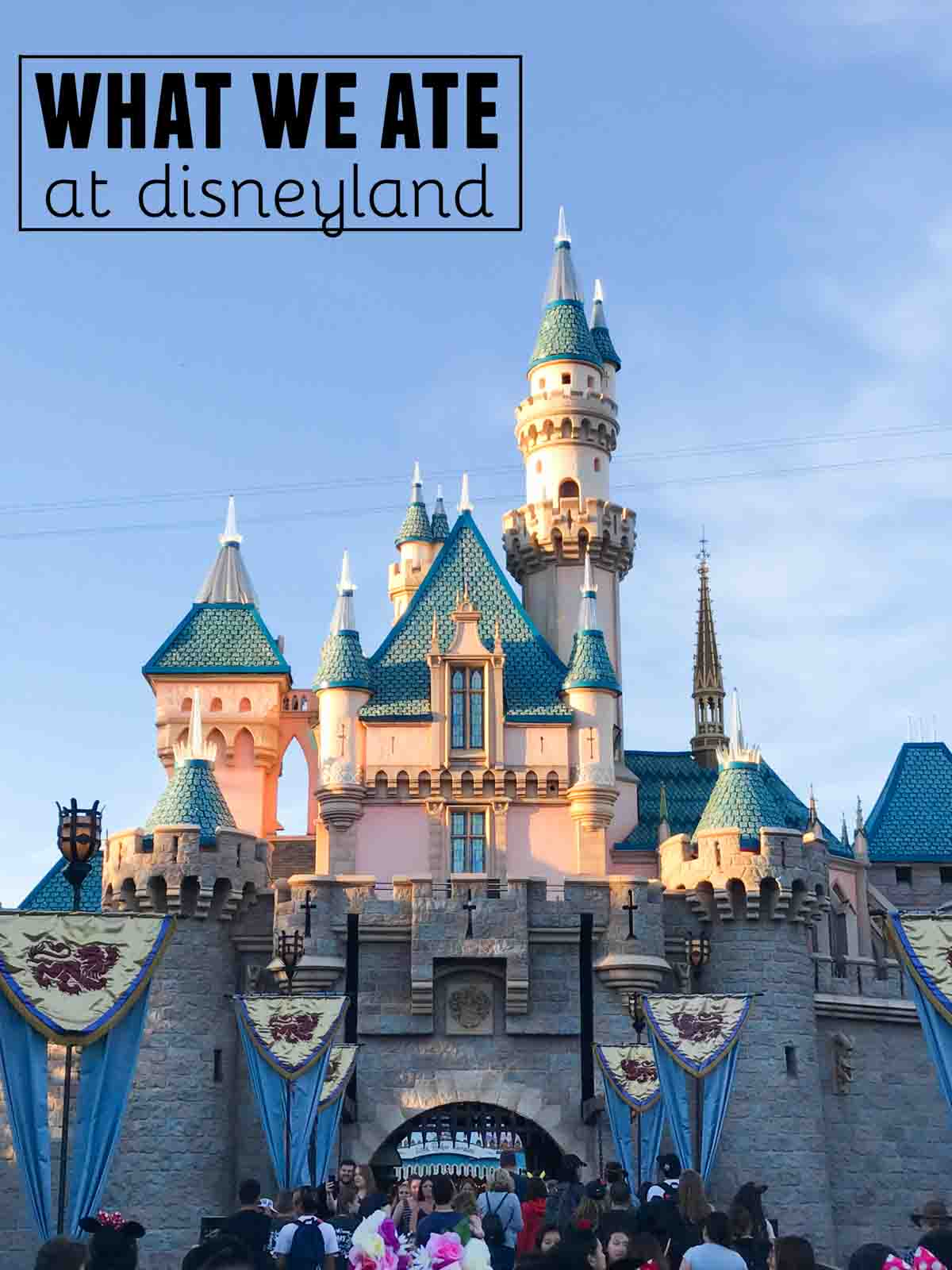 What We Ate At Disneyland Taste And Tell