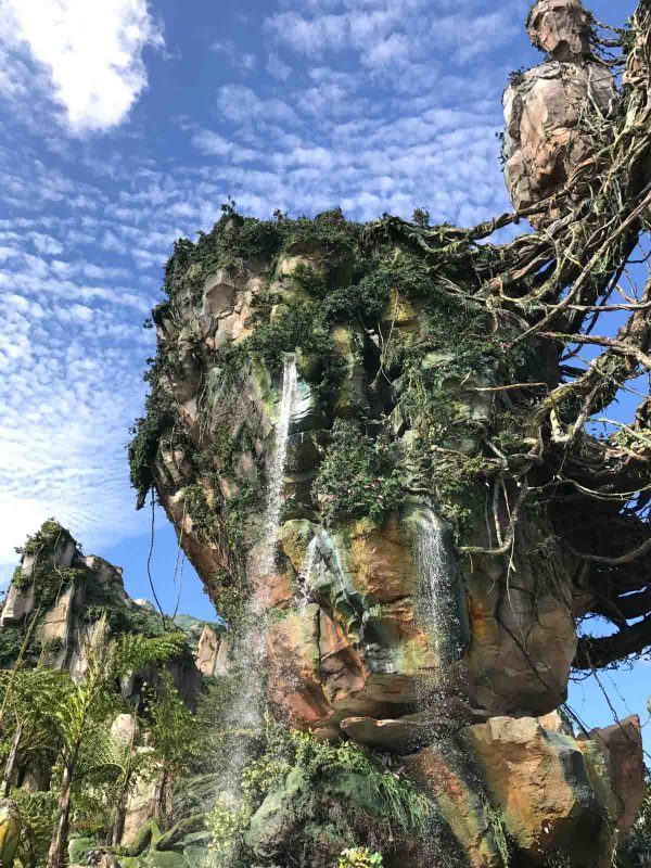 Pandora - World of Avatar at Disney World