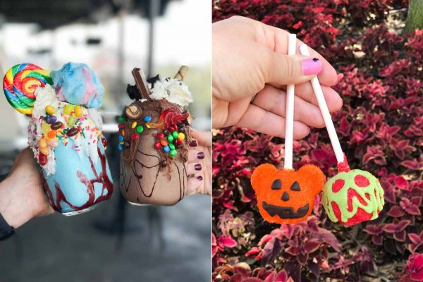 Treats from Disney Springs