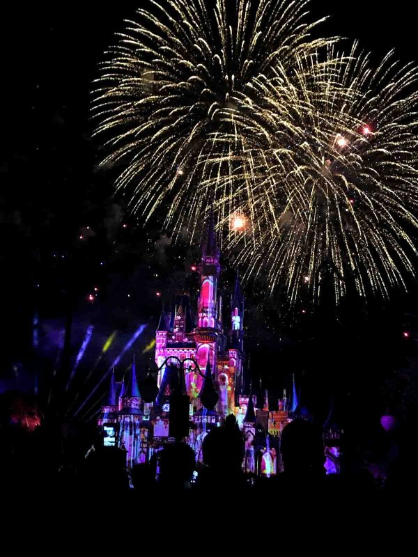 Happily Ever After Fireworks Show - Disney World