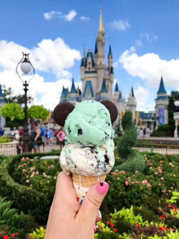Ice cream from Magic Kingdom Disney World