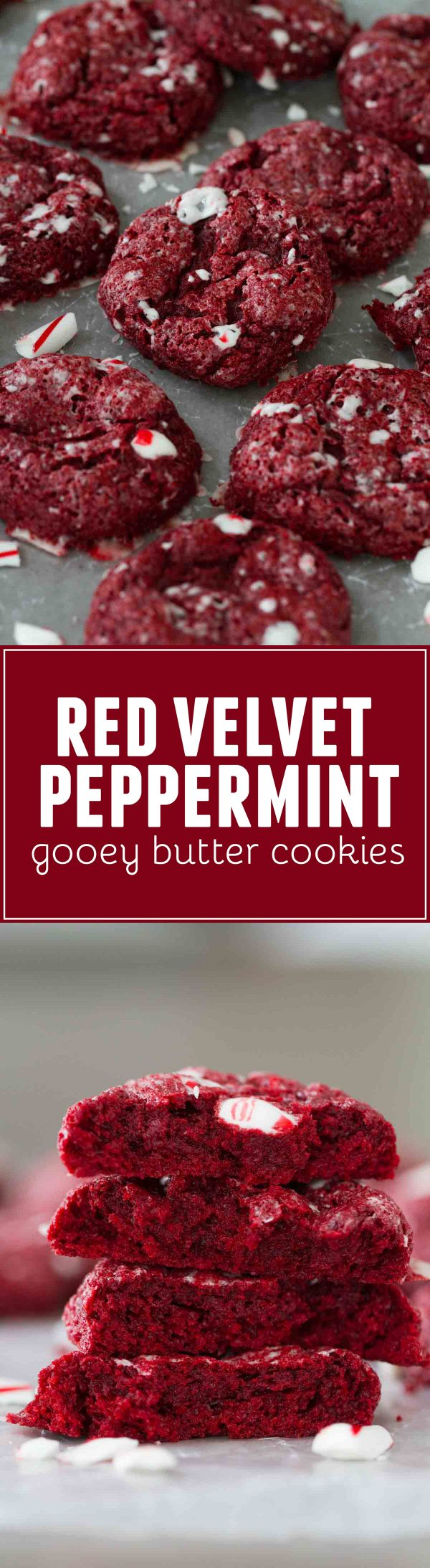 A holiday twist on red velvet, these Red Velvet Peppermint Gooey Butter Cookies are a cinch to make and have the perfect amount of holiday flair.