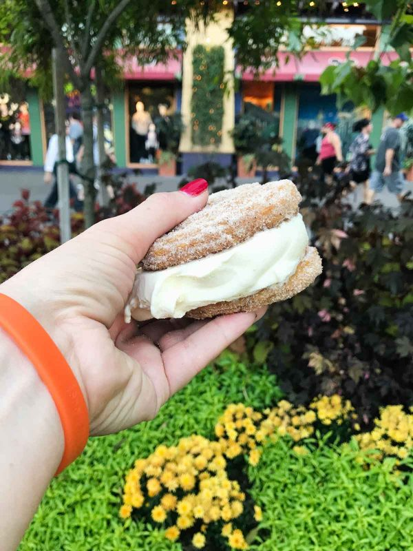 Churro Ice Cream Sandwich from Downtown Disney