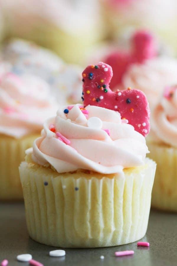 close up of Circus Animal Cookie Cupcake