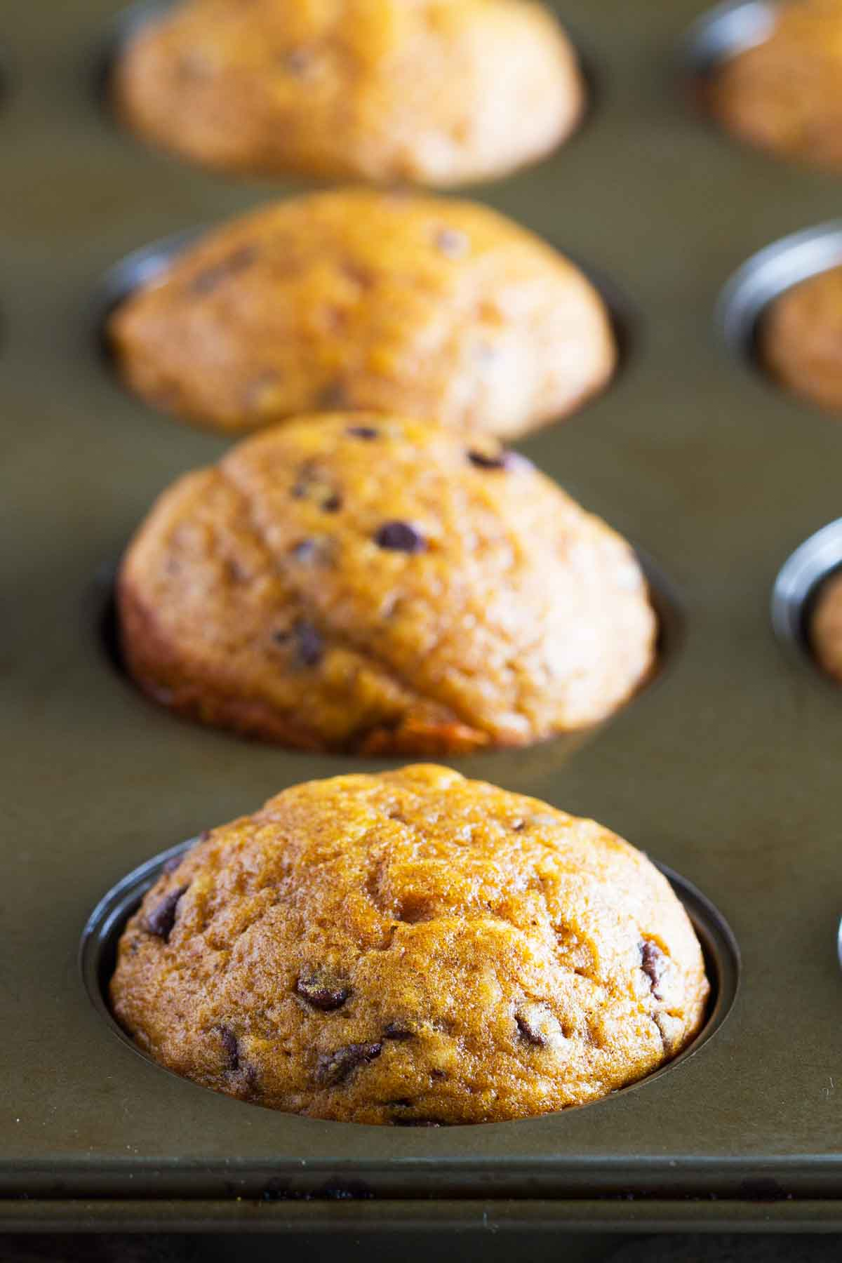 Pumpkin Muffins with Chocolate Chips in a muffin tin
