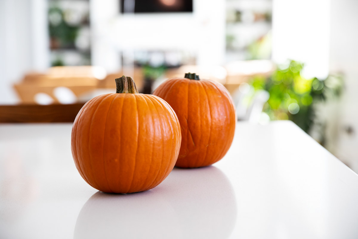 Sugar pumpkins on a counter