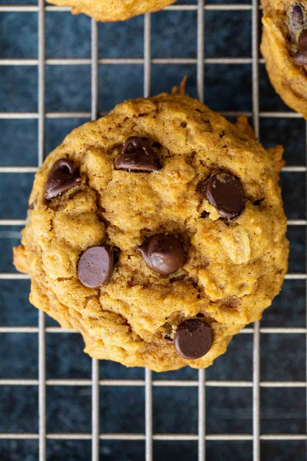 pumpkin cookies with oatmeal and chocolate chips