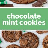 how to make chocolate mint cookies