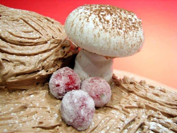 Meringue Mushroom