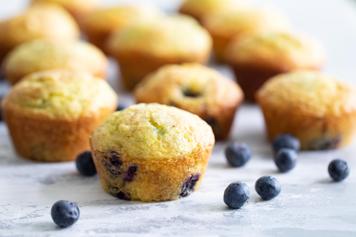 lemon blueberry muffins with fresh blueberries on the side