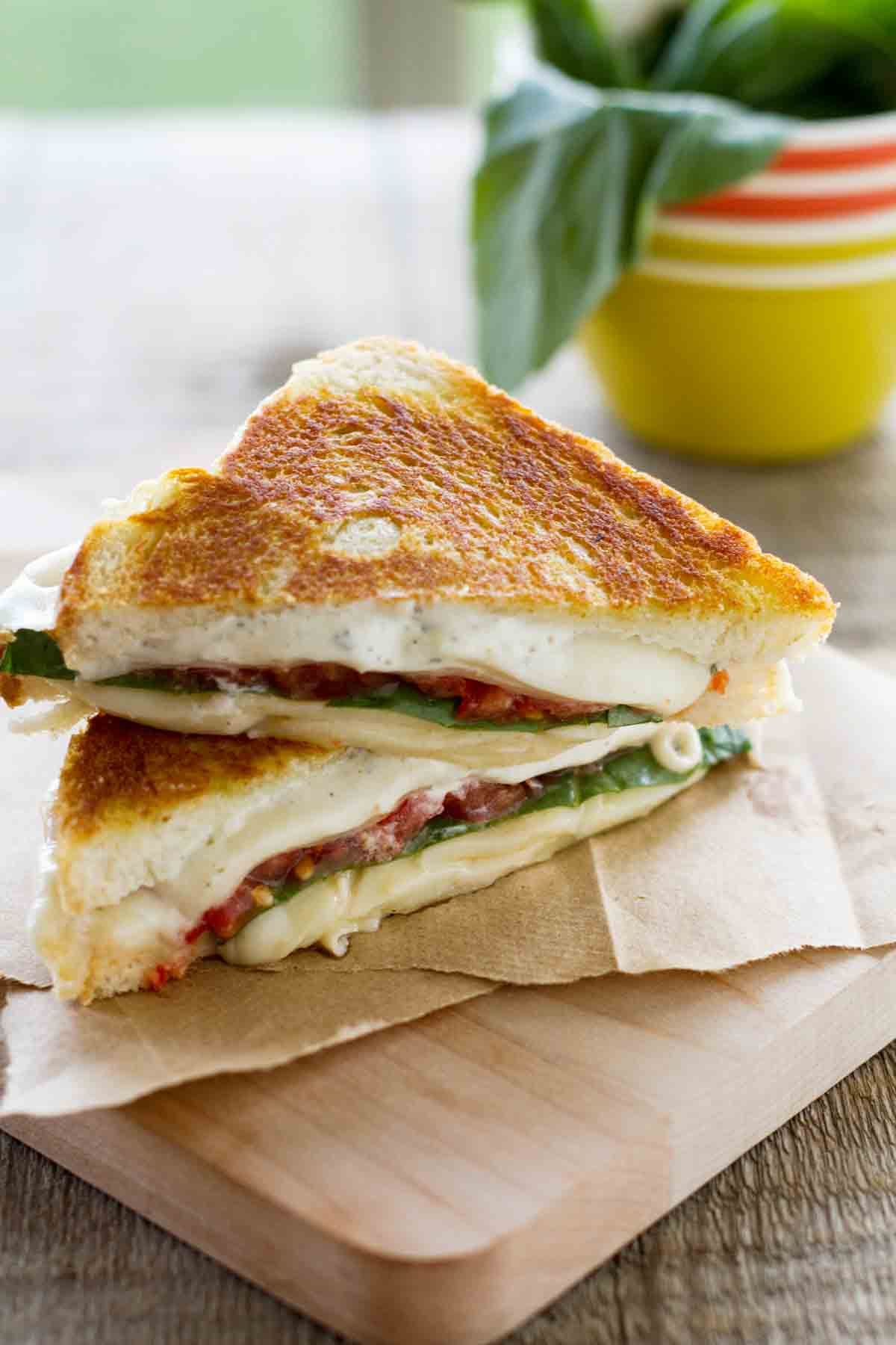 sliced grilled cheese sandwich with tomatoes and basil