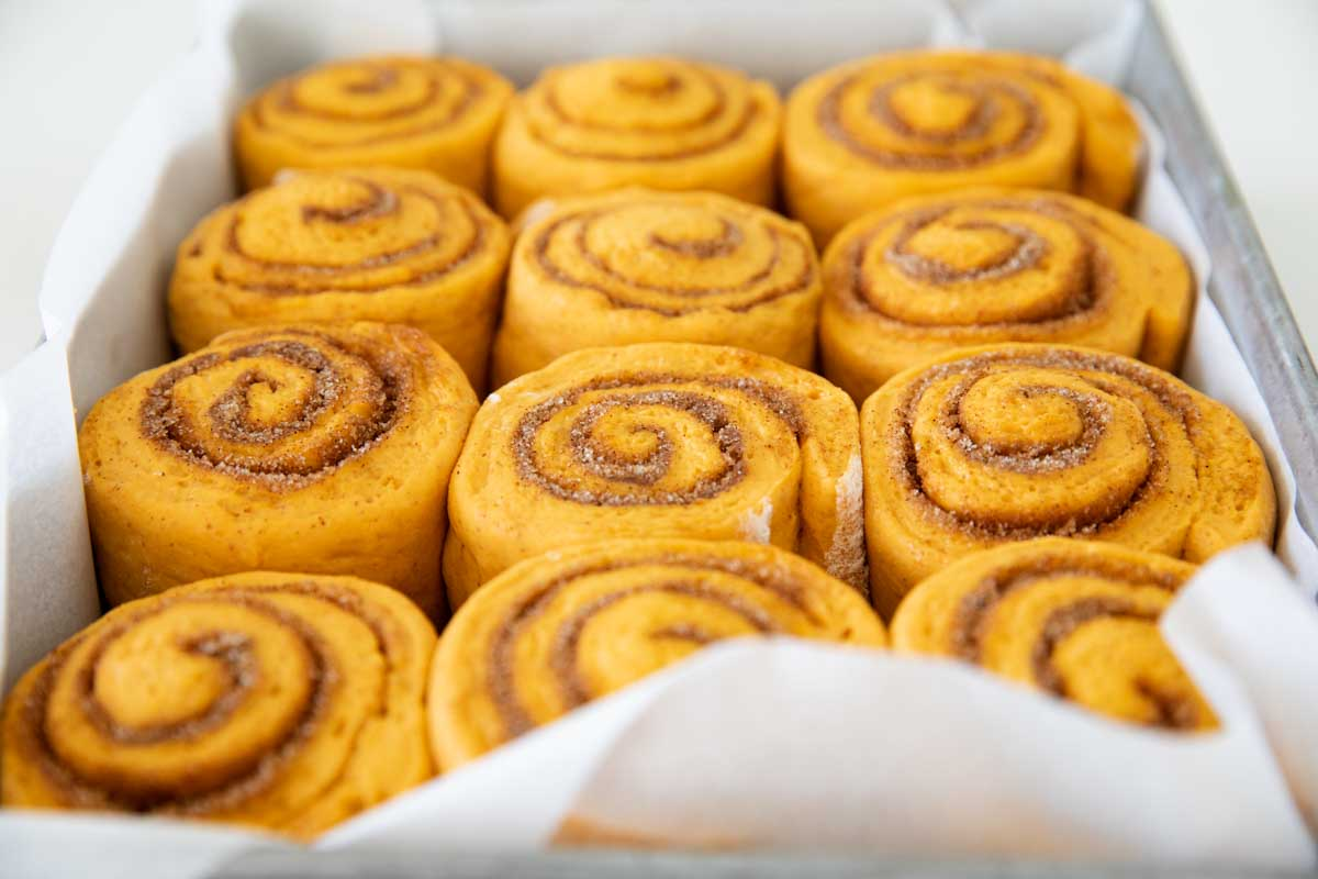 pan of baked Pumpkin Cinnamon Rolls without frosting