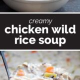 Chicken Wild Rice Soup with text in the center