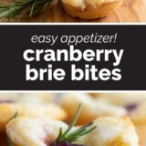 Cranberry Brie Bites with Text in the Center