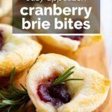 cranberry brie bites with text overlay