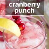 Sparkling Cranberry Punch with text overlay