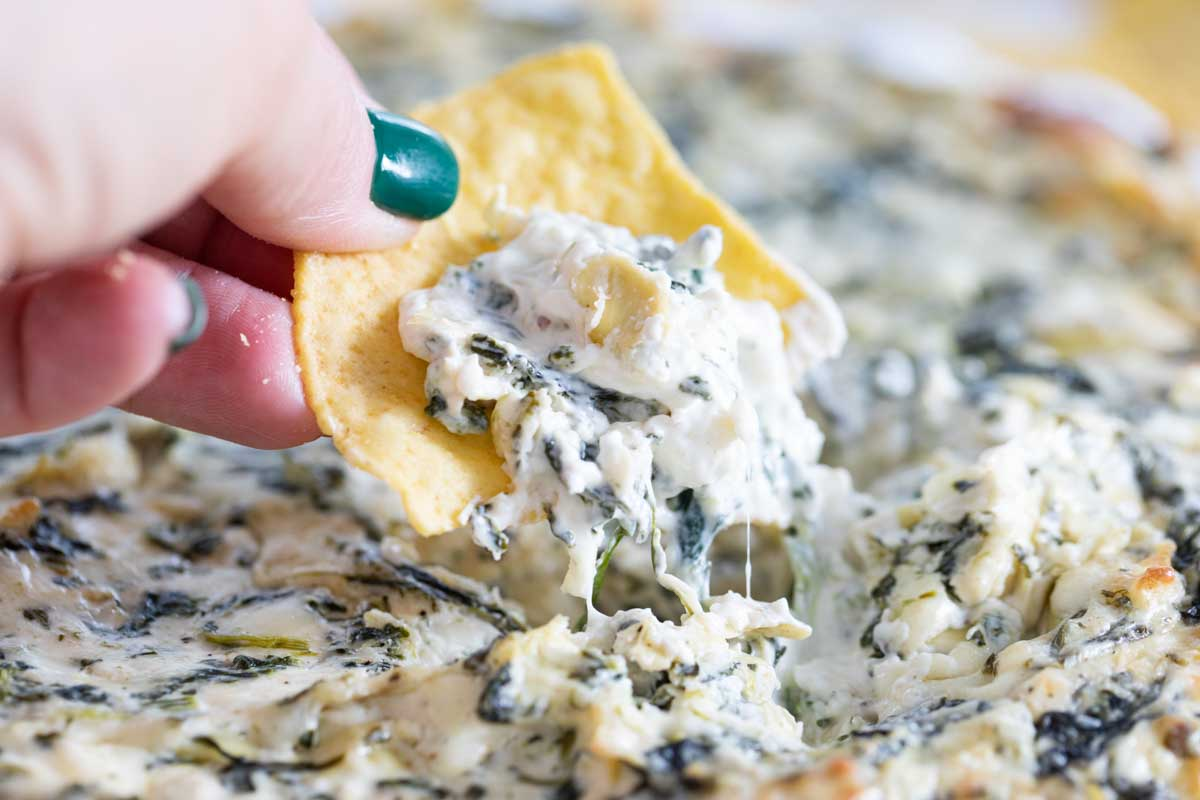 spinach artichoke dip on a chip